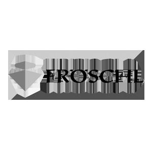 kunden_referenzen_froeschl